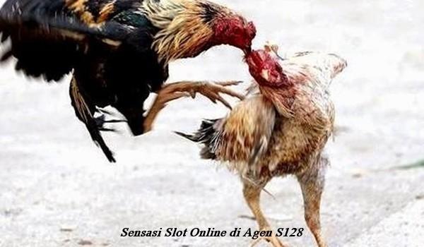 Sensasi Slot Online di Agen S128
